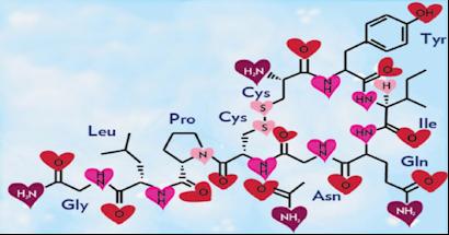 The Seductive Power of the Oxytocin Response Demystified ( Kino )